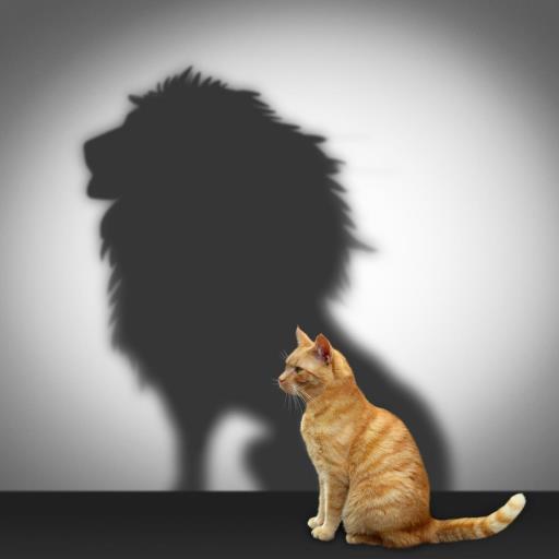 Un gato con sombra de León